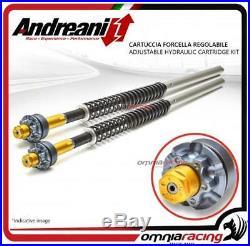 Andreani adjustable forks cartridge Moto Morini Corsaro 1200 2006